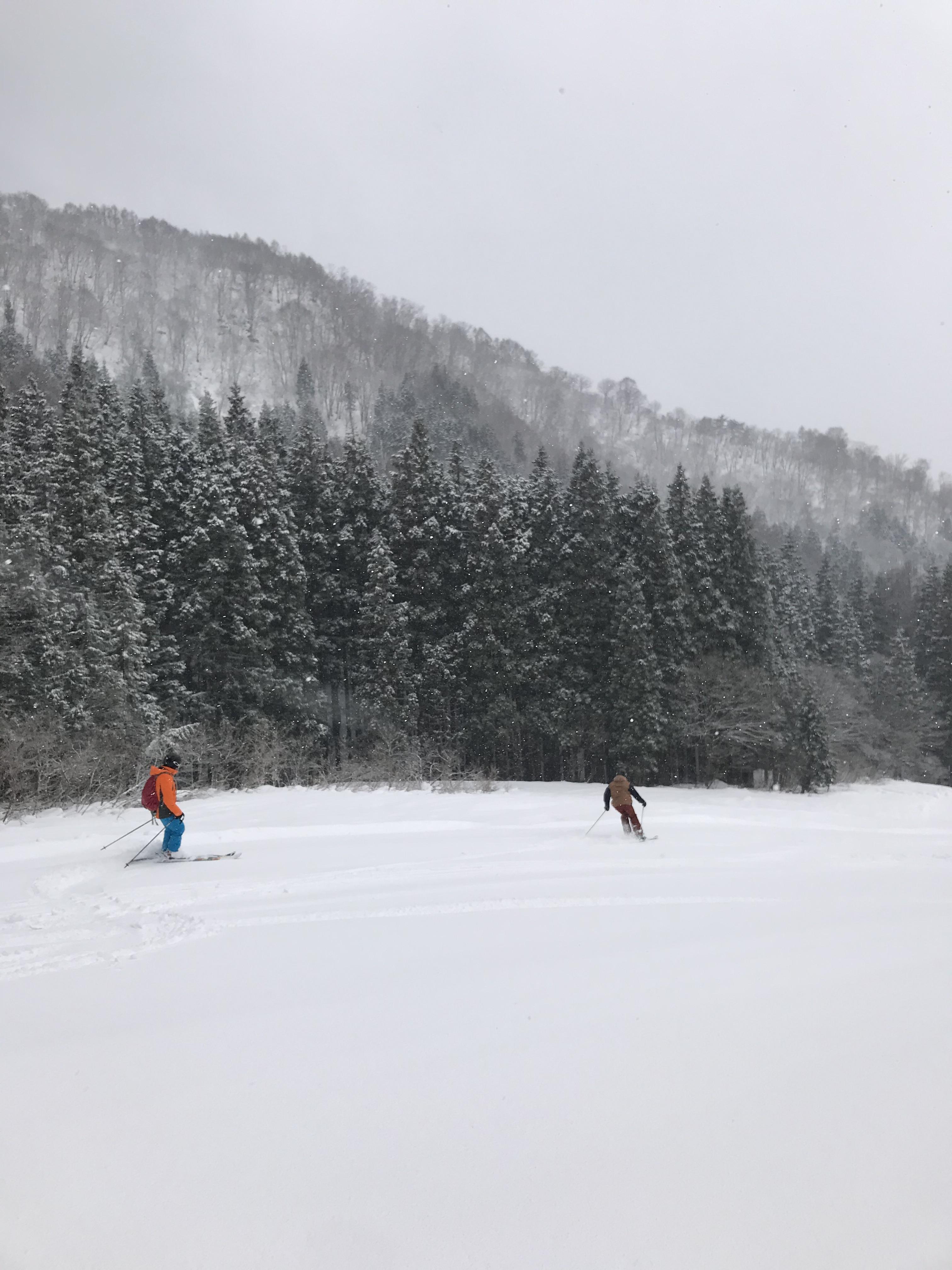 Ski Nozawa Onsen