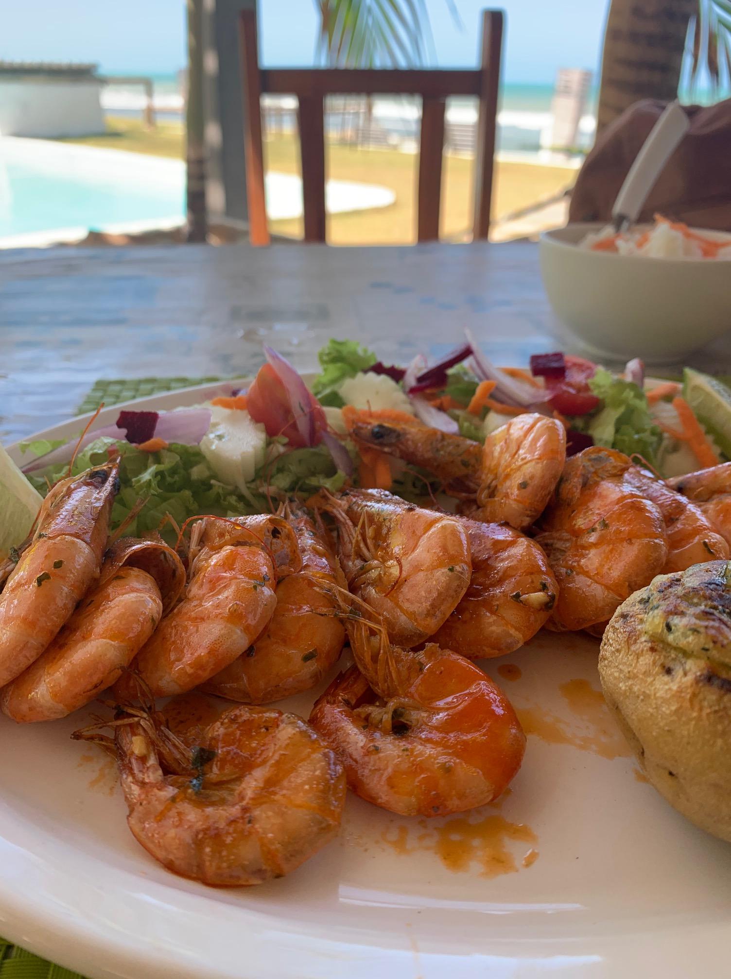 Shrimp, Brazil